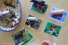 Printable Materials ~ Parents from Mars Montessori Baby, Montessori Trays, Montessori Kindergarten, Maria Montessori, Montessori Materials, Montessori Activities, Infant Activities, Toddler School, Toddler Classroom