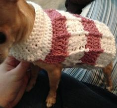 Ravelry: Simple Cables Dog Sweater by Cobos Closet