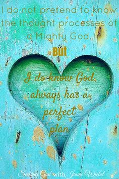 Seeking God: God's Perfect Plan and Sitting Among Friends Blog Party #16