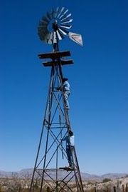 my sister in law...a city girl actually thought windmills were just in pastures for looks. Oh my Lord