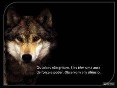 O silencio dos lobos