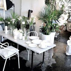 flower shop minamilanda