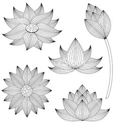 Lotus flower set on white background vector by Rattikankeawpun on VectorStock®