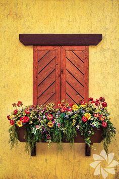 Bir dekor nesnesi olarak pencere önü çiçekleri