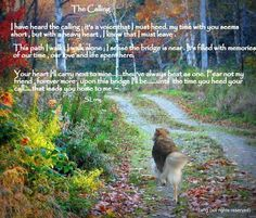 Grief ... So long dear friends. In memory of the pinner's friends, the sweet Cande & Cia.