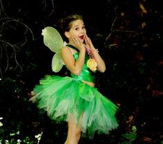 Tinkerbell inspired 4 piece fairy costume,fairy wings,fairy shoes slippers for  Birthdays, Disney ,dress up and Halloween,fairy photo prop