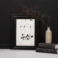 1800年代のアンティーク押し花。 約100枚の様々な押し花がフランスから届きました。1枚1枚、丁寧に説明が表記されています。 お気に入りの1枚を探しに是非いらしてください😊 . #GENERALSUPPLY #interiordesign #interiordecor #antique #art #artwork #botanical #botanicalart #homewares #homestyling #vsco #nagoya #gs4801146 #アートワーク #ドライフラワー #古道具 #古いもの #アンティーク #インテリア #フランス #長久手 #名古屋 #愛知 #日進 #名東区 #竹の山