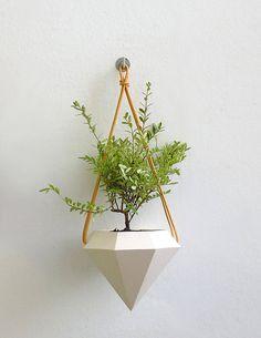 Design Trend Spotlight: Geometric Formsdo this on a shelf with a bonsai