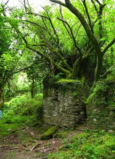 The Kerry Way walking path between Sneem and Kenmare in Ireland.