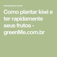 Como plantar kiwi e ter rapidamente seus frutos - greenMe.com.br