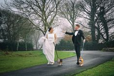 This beautiful Wedding Shot was of the bride and the groom walking their dog in the woods was taken by Marriage Multimedia Woods Photography, Wedding Shot, Groom, Marriage, Bride, Couple Photos, Multimedia, February, Walking