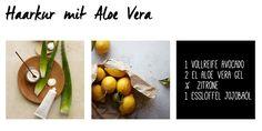 Haarkur selber machen mit Aloe Vera