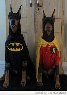 Too bad I prefer Dobies with uncropped ears...this would be fantastic to do.