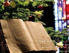 Mention écrite du sapin de Noël à Sélestat