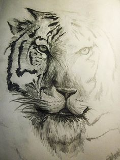 Ghost Tiger. Pencil Drawing