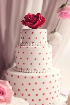 +A+tiered+polka+dot+cake+with+extra+large+sugar+craft+rose+