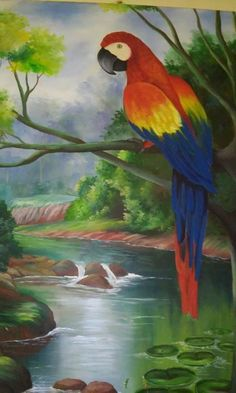 Bird Paintings On Canvas, Bird Artwork, Watercolor Artwork, Art Drawings For Kids, Colorful Drawings, Animal Drawings, Tropical Art, Tropical Birds, Landscape Art