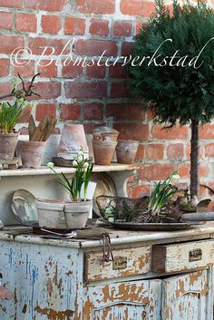 Repurposed dresser as a potting bench