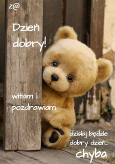 Night Quotes, Teddy Bear, Pictures, Polish Sayings, Good Morning, Night, Poster, Photos, Teddy Bears