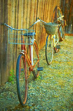 Two Bicycles by Tara Turner - when was the last time you went for a bike ride?