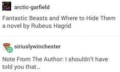 I'd read it.