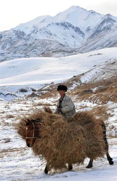 Village people: A man carries hay for the winter in the mountains near Tash-Bashat village, Kyrgyzstan. Photo by: Vyacheslav Oseledko