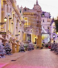 Christmas 🎄 in Monaco 🇲🇨!  Breathtakingly beautiful, and I spy 🕵🏻‍♀️ a Chanel boutique! 😉