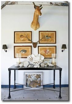 Side table styled with seashells, coral, mounted antlers, a deer head, and vintage prints of fish. Cabinet of Curiosities naturalist style! - Home Decor Details Isabel Lopez, Cabinet Of Curiosities, Interior Decorating, Interior Design, Interior Ideas, Interior Styling, Interior Inspiration, Decorating Ideas, Nature Decor