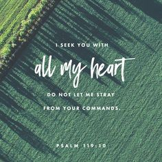 With my whole heart I seek you; let me not wander from your commandments! http://bible.com/59/psa.119.10.ESV