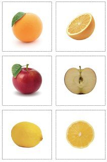 Fruits Inside and Out Matching Cards Printable - Botany - The Helpful Garden Montessori Preschool Food, Montessori Preschool, Montessori Education, Montessori Materials, Kids Education, Preschool Activities, Early Education, Special Education, Fruit And Veg