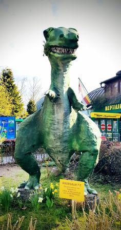 Faszinierende Reptilien im Reptilienzoo Happ in Klagenfurt Nie mehr Angst vor Schlangen – die vergeht Ihnen garantiert, wenn Sie Kärntens beliebtesten Reptilienzoo, den Reptilienzoo Happ in Klagenfurt am Wörthersee besuchen. Sie erleben Mambas, Kobras, Klapperschlangen, Giftfrösche, Echsen, Spinnen, Fische, Schildkröten in Terrarien und Freilandanlagen hautnah. #kärnten #top10kärnten #carinthia #carinzia #austria #wörthersee #karyntia #kaernten #karintie #discoveraustria #reiseziele #travel Klagenfurt, Angst, Winter, Terrariums, Spinning, Dinosaurs, Road Trip Destinations, Winter Time, Winter Fashion
