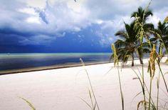 December 6: Key West Triathlon