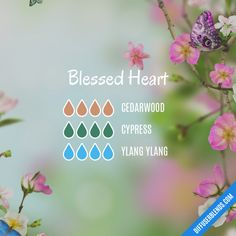 Blessed Heart - Essential Oil Diffuser Blend
