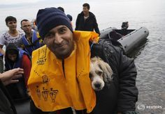 Exhausted Afghan migrant carries his dog in his life vest moments after arriving in Lesbos in dinghy.Yannis Behrakis