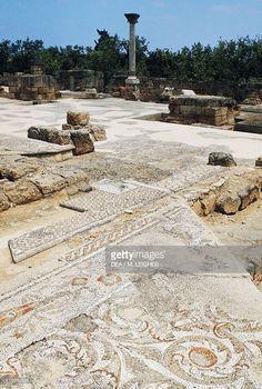 Archaeological ruins and floor mosaic of the early Christian basilica of San Leucio, Canosa di Puglia, Puglia. 6th century AD, Italia.