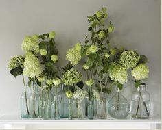 I know its not just foliage, but i love the green - Monochrome flowers in various glass bottles by Scarlet  Violet