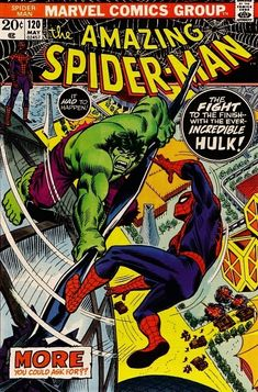The Amazing Spider-Man #120 - The Fight and the Fury (Issue)