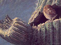 Elf owl - Robert Bateman It's gorgeous. ^.^