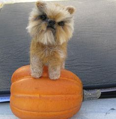 NEEDLE FELTED  DOG~ CUSTOM PET PORTRAIT~Brussels Griffon~ by GOURMET FELTED~CRICKET by Gourmet Felted, via Flickr
