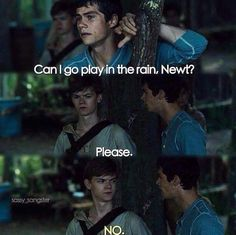 Someone should just add this scene as a flashback in the Death Cure after 'it' (pg 250) happens so I can laugh and mourn at the same time.