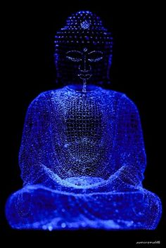 Better than a thousand hollow words is one word that brings peace-Buddha