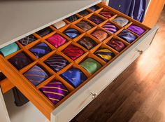 Gentil Storage And Closets Design Ideas, Remodels And Pictures Tie / Sock / Bra /  Panty / Scarf Organizer