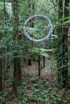 Portal by Bronwyn Berman