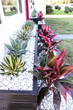 Kick up your flower beds with some custom planter boxes! With some desert-inspired plants and white rock, we got the Palm Springs look we were going for. Watch the full episode at youtube.com/theweekender to see how these were built!