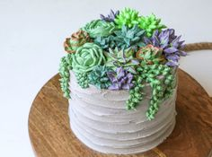 Really nice recipes. Every hour. • How to make a stunning buttercream succulent cake...