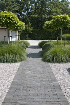 Large backyard landscaping ideas are quite many. However, for you to achieve the best landscaping for a large backyard you need to have a good design. Back Gardens, Small Gardens, Outdoor Gardens, Garden Paving, Garden Paths, Boxwood Garden, Clay Pavers, Contemporary Garden Design, Front Yard Landscaping