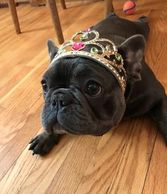 """""""Yes, I am the Princess of the Family!"""""""