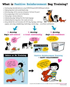 Positive Reinforcement Dog Training (Image credit: doggiedrawings.net)