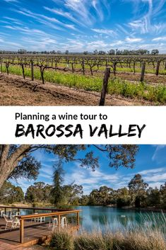 Barossa Valley Wine Tour - all the planning tools you need for what to see and do, and how to get around #BarossaValley #SouthAustralia #Australia