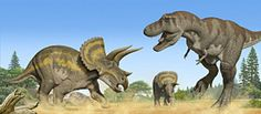 10 Prehistoric Battles That Could (and Probably Did) Happen: Tyrannosaurus Rex vs. Triceratops